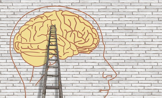 brain-3535300__340